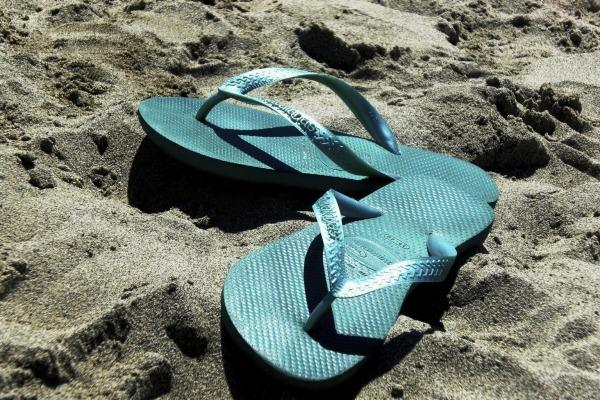 Summer in the sun