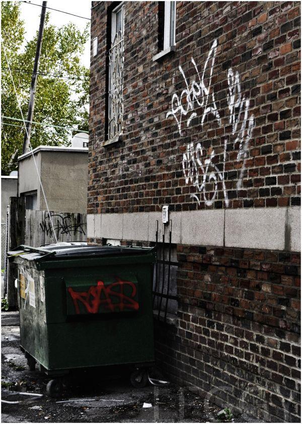 Garbage, Bin, Alley, Leggy, Contrast, Tagging, Gra