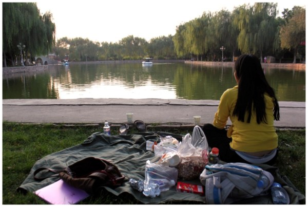 picnic in the park.