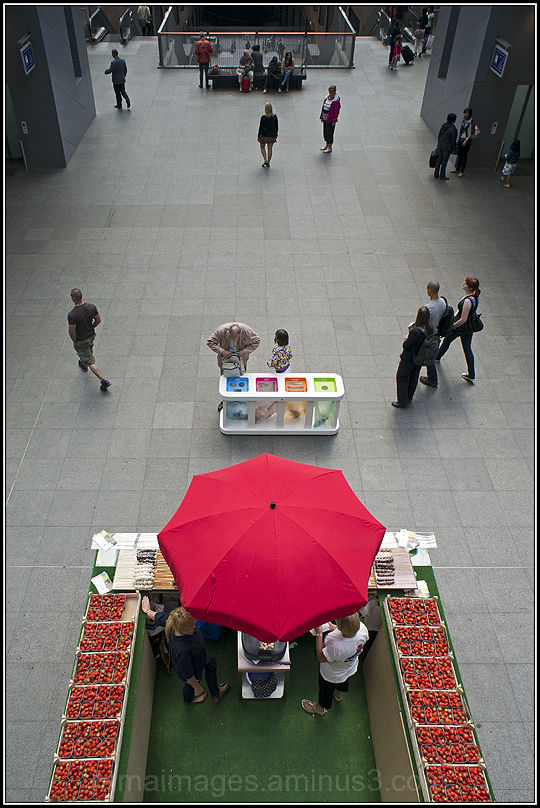 strawberry vendor
