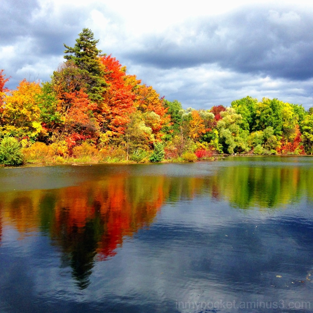 The brilliant colours of Autumn in Ontario