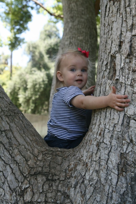 Little Tree Hugger