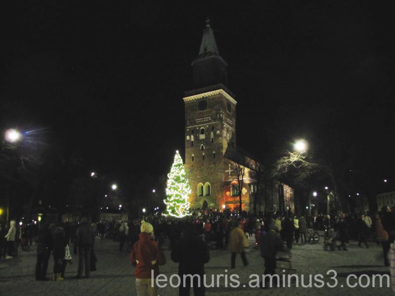 Christmas tree, joulukuusi, valot, lights, yö nigh