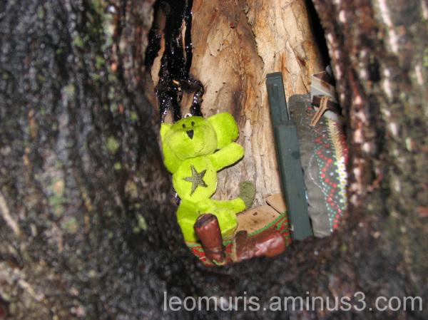 Hiiri puunkolossa, mouse in hole