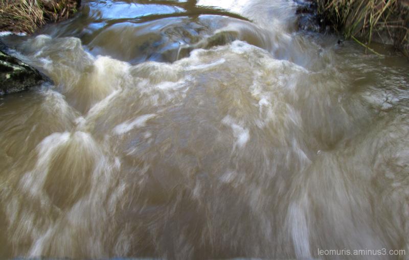 Juokseva puro - Running creek.