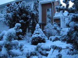 Lunta - snow