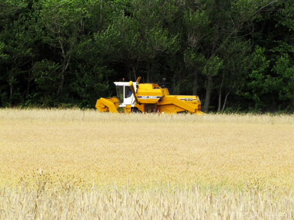 Leikkupuimuri - Combine Harvester.