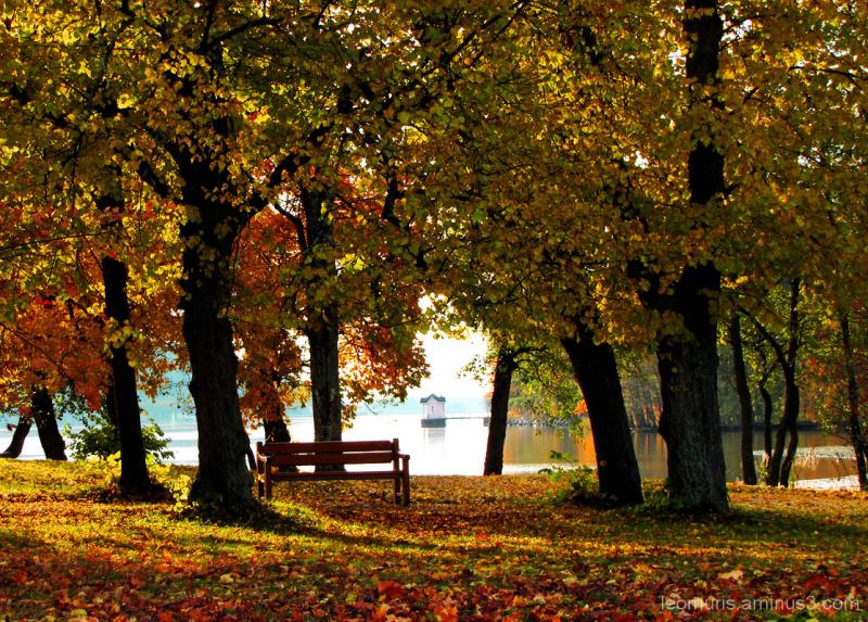Ruska - autumn