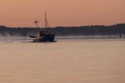 Troolari - Trawler.