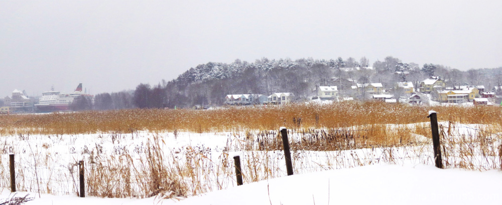 Luminen maisema - Snowy landscape