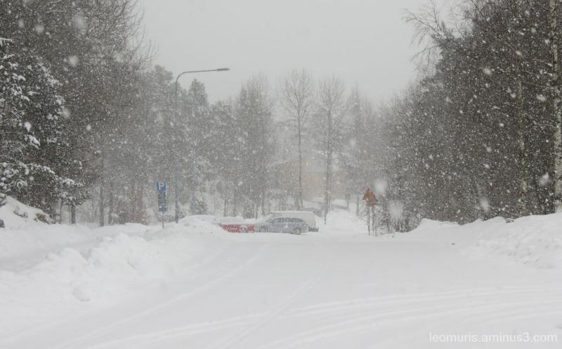 Lumisade - Snowy