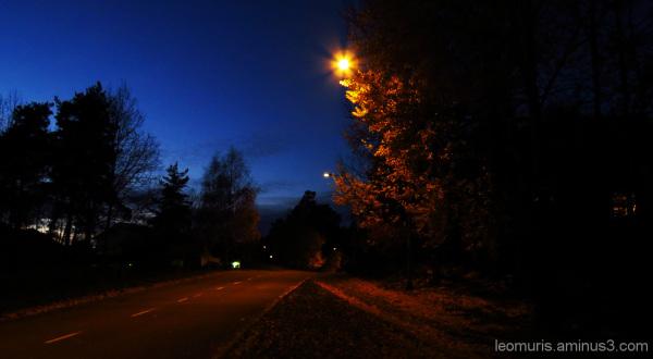 Ilta - Evening