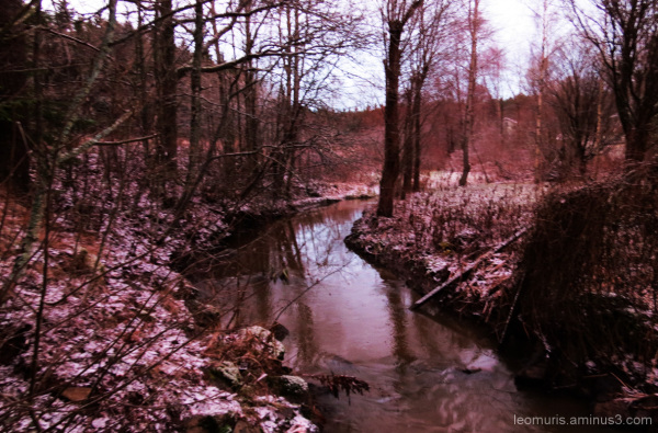 Puro - Creek