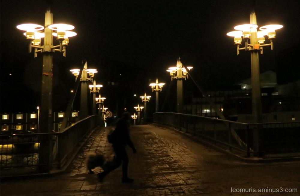 Lights on the bridge
