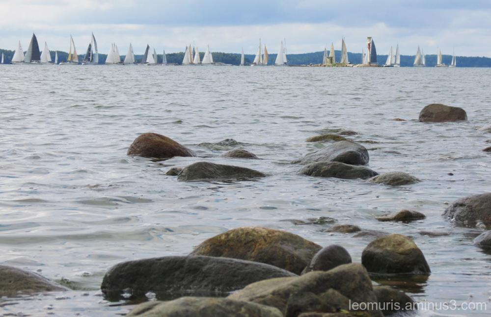 Swan yachts