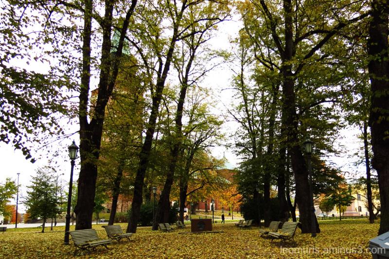 Turku Cathedral Park.
