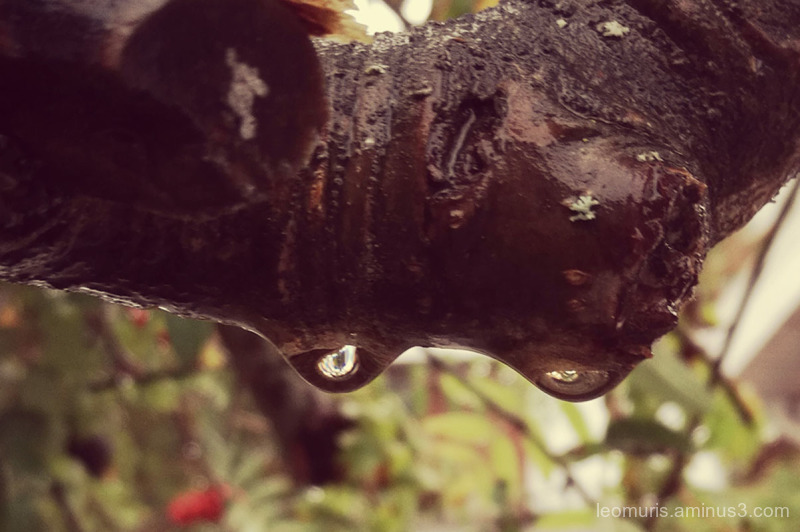 Two drops