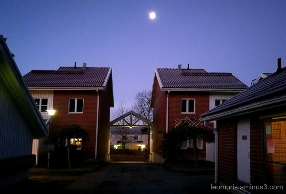 Moonlight morning