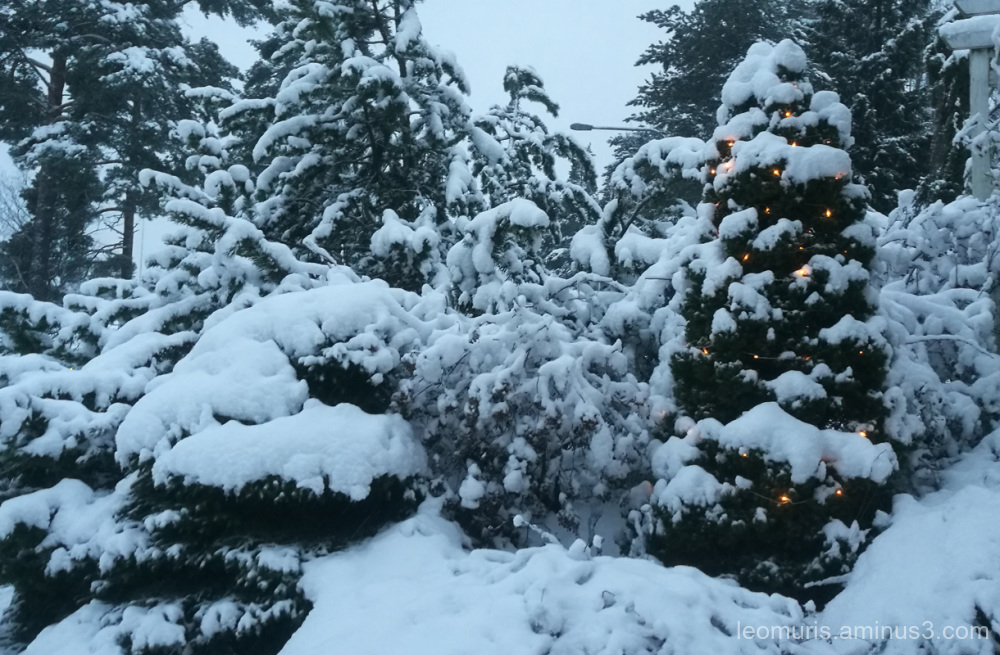 Very snowy