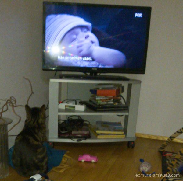 Leevi is wathcing tv