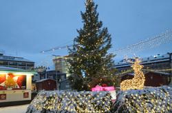 Christmas tree and reindeer...