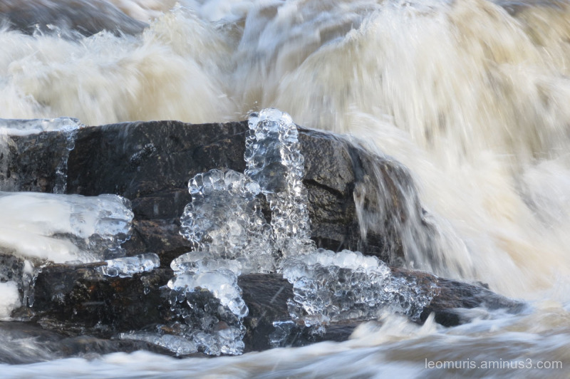 the scilpture of ice