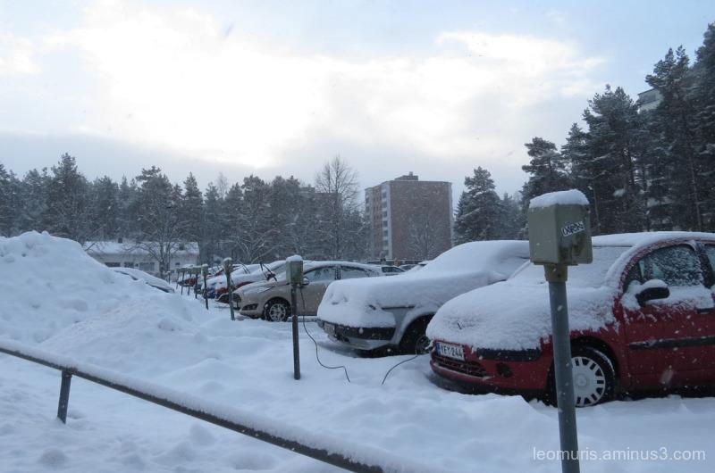 snowy day...