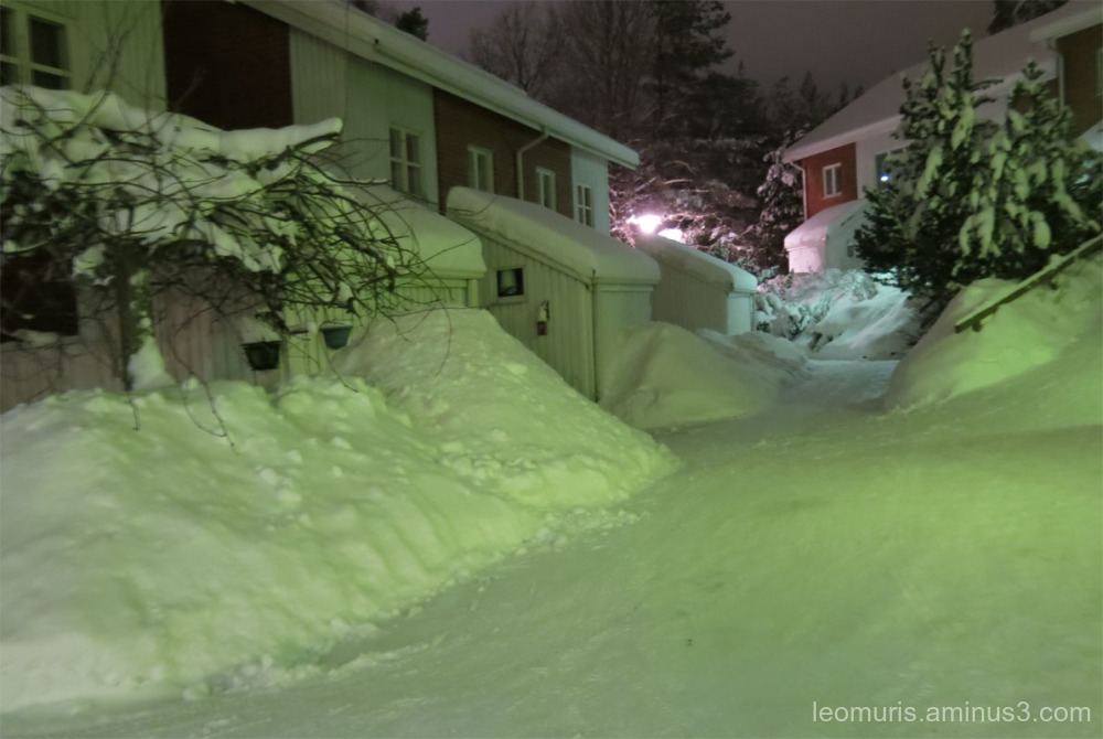 Snowy yard