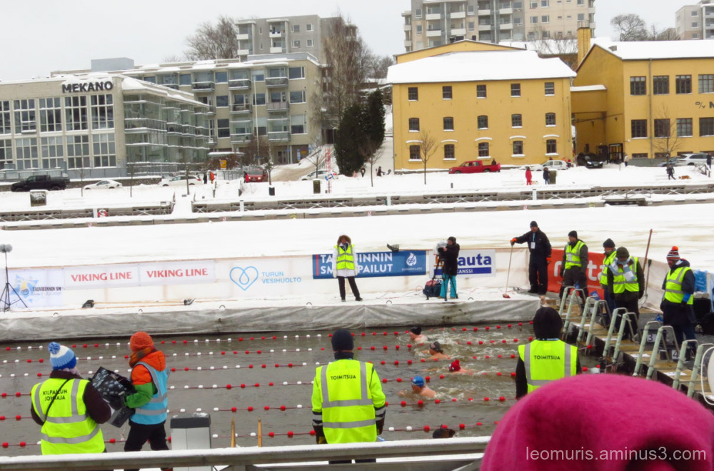 Winter swimmers