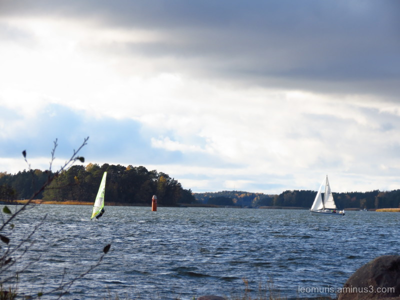 sailing autumn