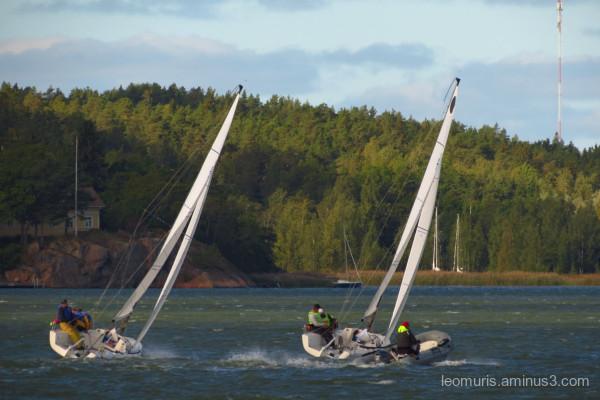 sailing autumn
