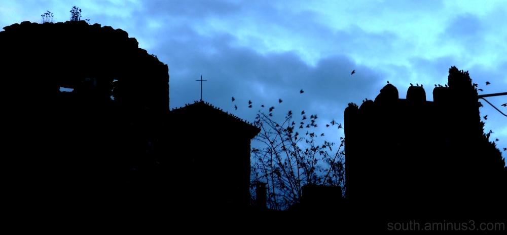 oiseau bird étourneau château castle