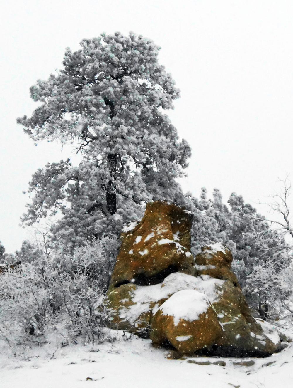 Rocky Area #2