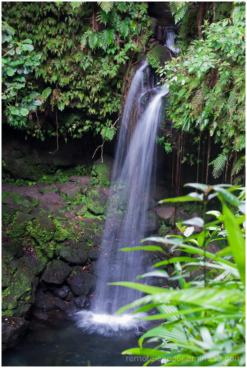 verdant waterfall scene in dominica west indies