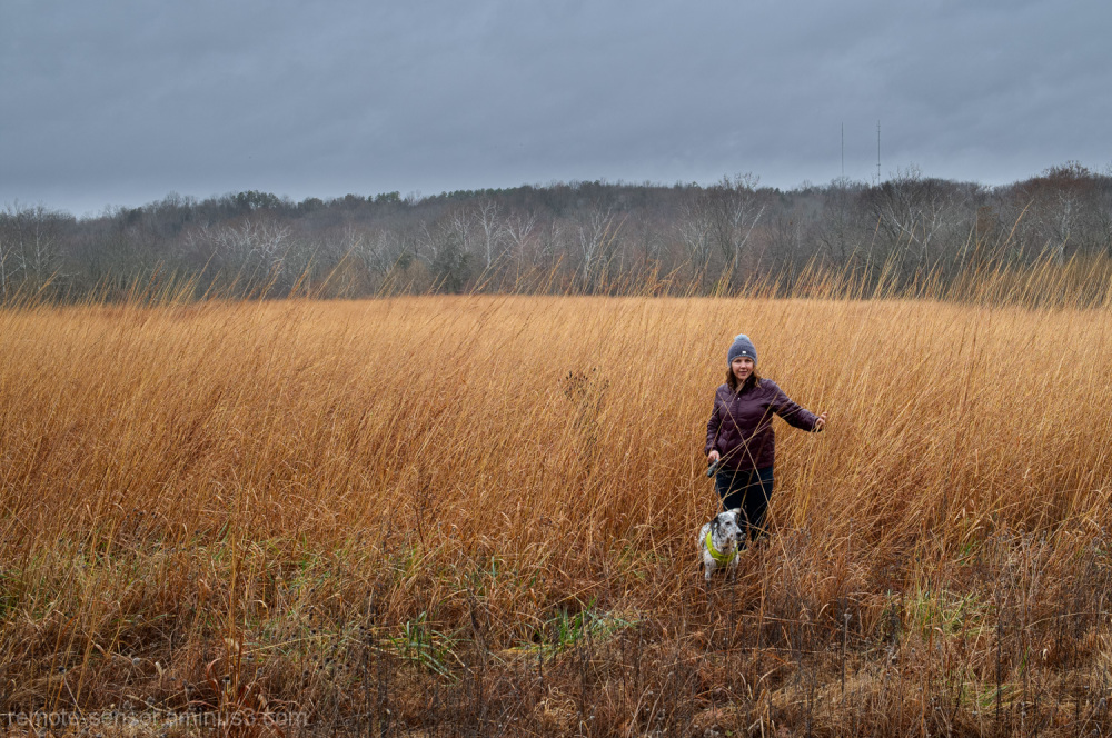 a girl and her dog in a field of tall grasses