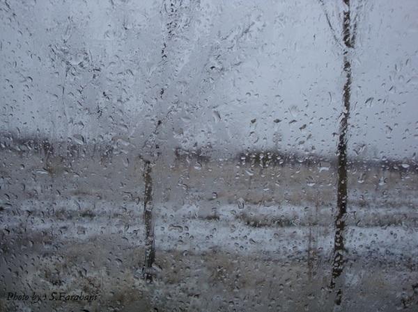 من درون قفس سرد اتاقم دلتنگ... - آبان 90