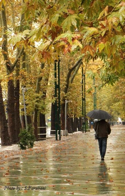 چتر به دست گرفتيم و راه افتاديم  - آبان 90