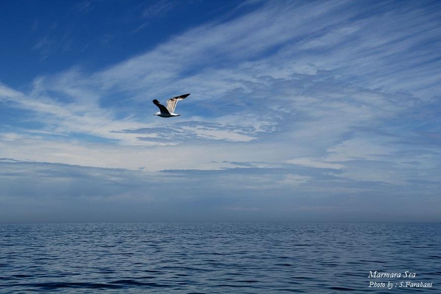 دریا و آسمان - خرداد 91