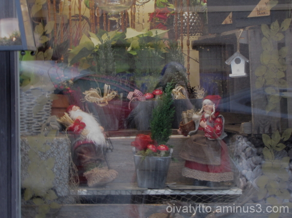 The flower shop Christmas window!