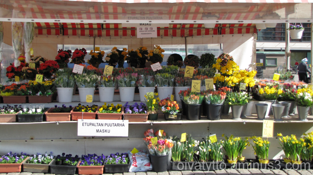 Easter flowers at the market!