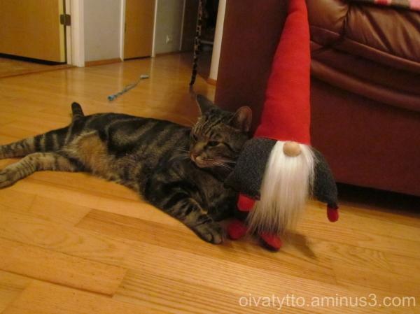 Leevi and the Christmas Elf!