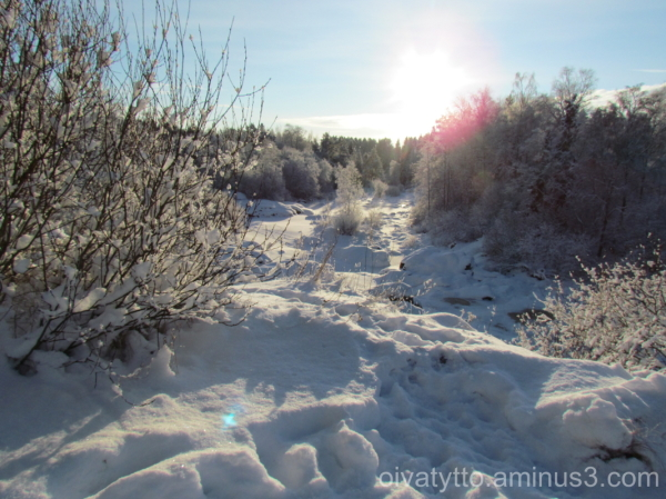 Wintry picture Nautelankoski!