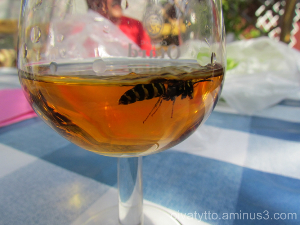 Bee swimming Whisky in the glass!