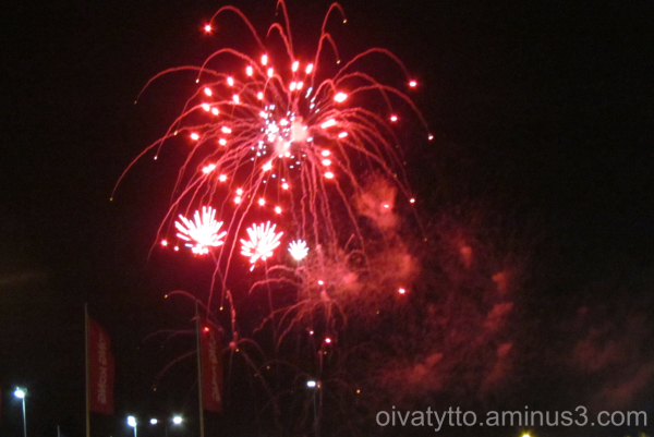 Beautiful red fireworks.