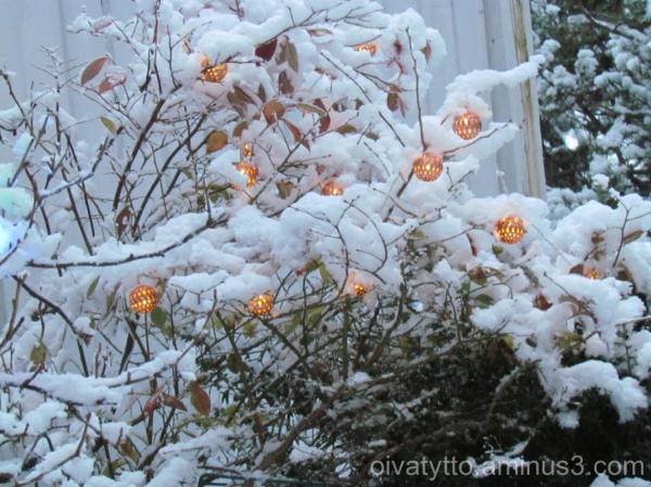 Yesterday evening it snowed!