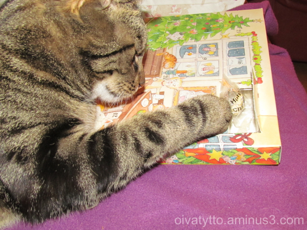 Leevi and Christmas calendar.