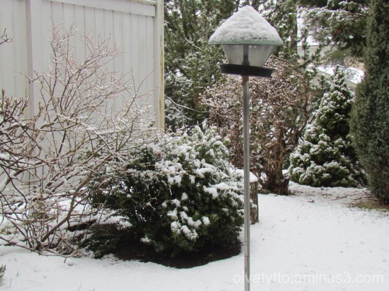 Again came snow.