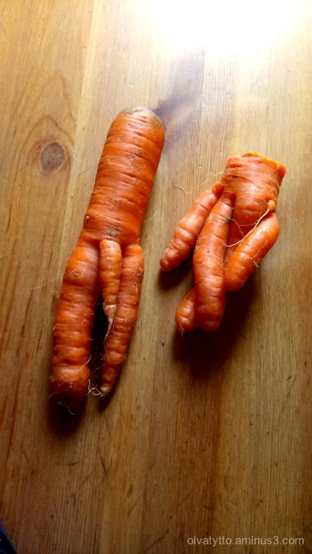 Fun carrots.