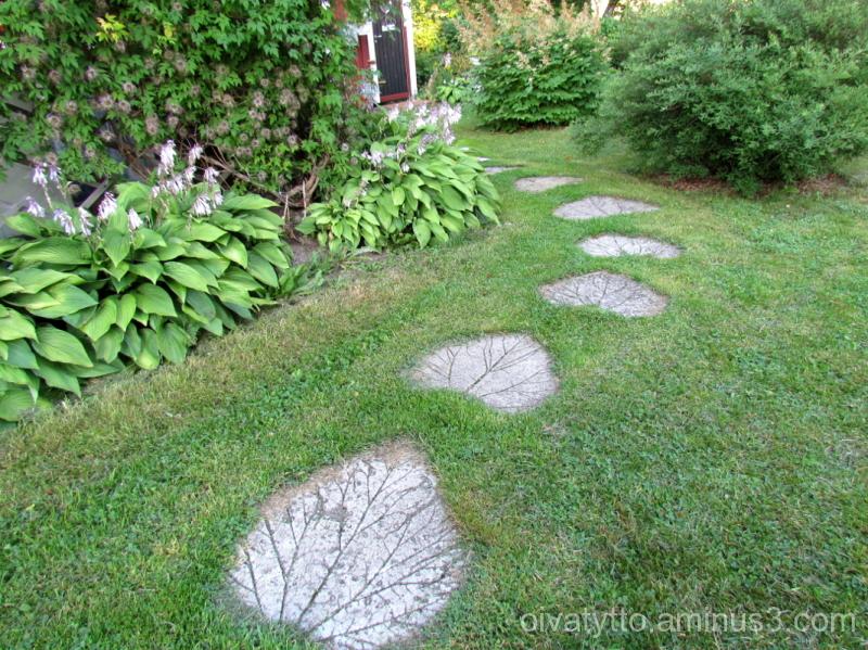 The yard Path.