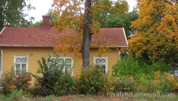 The color scheme of the old house's yard autumn.
